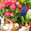 Assorted spring flowers with home easter decoration — Stock Photo