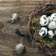 Stock Photo: Birds eggs in nest over wooden background
