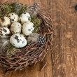Birds eggs in nest over wooden background — Stock Photo #21856077