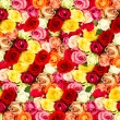 Fresh assorted roses. colorful flowers — Zdjęcie stockowe #21856225
