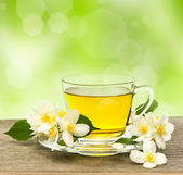 Cup of tea with jasmine flowers — Stock Photo