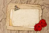 Stary papier blank i dwa kwiaty róży — Zdjęcie stockowe