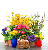 Colorful spring flowers and easter eggs — Stock Photo
