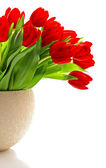 Bouquet of red fresh spring tulip flowers — Stock Photo