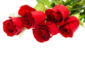 Bouquet of red rose flower on white — Stock Photo