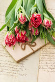 Soft pink tulips, old love letters and cards — Stock Photo