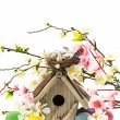 Colorful easter decoration with birdhouse and eggs — Stock Photo #21911635