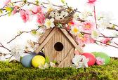 Colorful easter decoration with birdhouse and eggs — Stock Photo