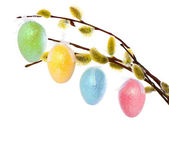spring tree with easter eggs decoration — Stockfoto