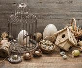 старинные пасхальные украшения с яйцами и птичья клетка — Стоковое фото