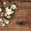 Flowers and easter nest with eggs on wooden background — Stock Photo