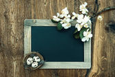 Chalkboard with apple tree blossom and easter eggs decoration — Stock Photo