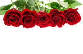Bouquet of red rose flowers on white — Stok fotoğraf
