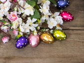 Spring blossoms and easter eggs decoration — Stock Photo