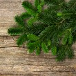Fir tree branch on rustic wooden background — Stock Photo #24954141