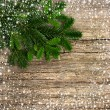Royalty-Free Stock Photo: Fir tree branch with snowflakes frame