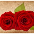 Stock Photo: Vintage card board with red roses