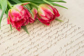 Soft pink tulips with old handwritten love letter — Stock Photo