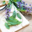 Fresh sage leaves and blossoms on wooden cutting board — Stock Photo