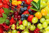 Mischung aus frischen früchten und beeren. rohkost-zutaten — Stockfoto