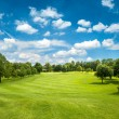 Green golf field and blue cloudy sky — Stock Photo