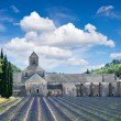 Stock Photo: Senanque abbey with lavender field, landmark of Provence