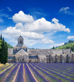 Senanque abbey with lavender field, landmark of Provence, Vauclu — Stock Photo