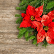 Christmas tree branch with poinsettiaon wooden background — 图库照片