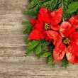 Christmas tree branch with poinsettiaon wooden background — ストック写真