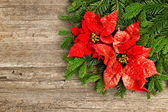 Christmas tree branch with poinsettiaon wooden background — Stock Photo