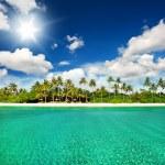 Tropical island beach — Stock Photo #31223679