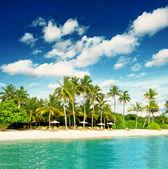 Tropische insel-strand — Stockfoto