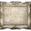 Old silver frame — Stock Photo #31240871