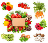 Variety fresh herbs and vegetables — Stock Photo