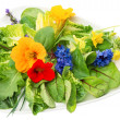 Green salad with flowers — Stock Photo #31308997