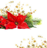 Christmas Flower with golden decoration — Stock Photo