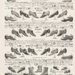 Vintage victorian shoes collection. antique shop advertising — Stock Photo