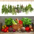 Fresh vegetables and hanging herbs. raw food ingredients — Stock Photo