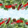 Christmas tree branch with red berrries — Stock Photo
