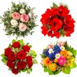 Four colorful flowers bouquet. roses, amaryllis, tulips — Stock Photo #37006135