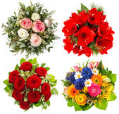Four colorful flowers bouquet. roses, amaryllis, tulips — Photo