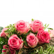 Bouquet of fresh pink roses isolated on white — Stock Photo