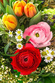 Bouquet of colorful spring flowers — Stock Photo
