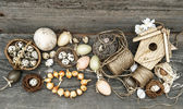 vintage decoration with eggs and flower bulbs — Stock Photo
