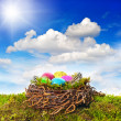 Stock Photo: Easter nest with colored eggs over green grass