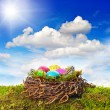 Easter nest with colored eggs over green grass — Stock Photo