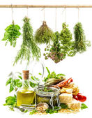 Pesto sauce and italian food ingredients on white — Stock Photo