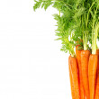 Carrots with green leaves isolated on white background — Stock Photo #42140457