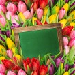 Fresh spring flowers. tulips and blackboard — Stock Photo