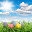 Easter eggs in green grass with blue sky — Stock Photo